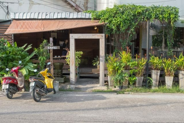 specialty coffee in thailand